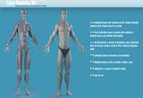 دانلود Easy Anatomy 3D 5.0 for Android