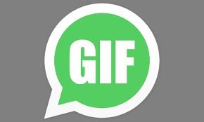 واتساپ گیف شبکه اجتماعی GIF
