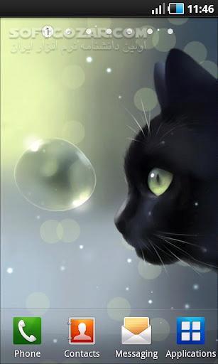 Curious Cat 1 2 0 for Android 2 1 تصاویر نرم افزار  - سافت گذر
