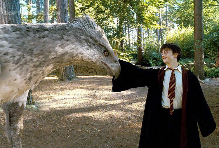 Harry Potter and the Prisoner of Azkaban تصاویر نرم افزار  - سافت گذر