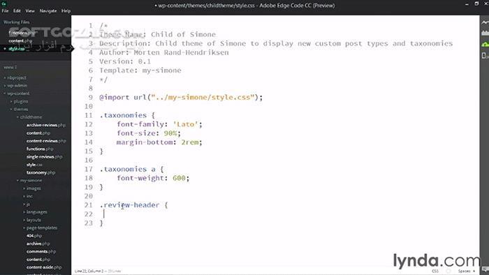 Lynda WordPress Custom Post Types and Taxonomies تصاویر نرم افزار  - سافت گذر