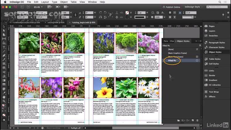 Lynda InDesign Advanced Styles تصاویر نرم افزار  - سافت گذر