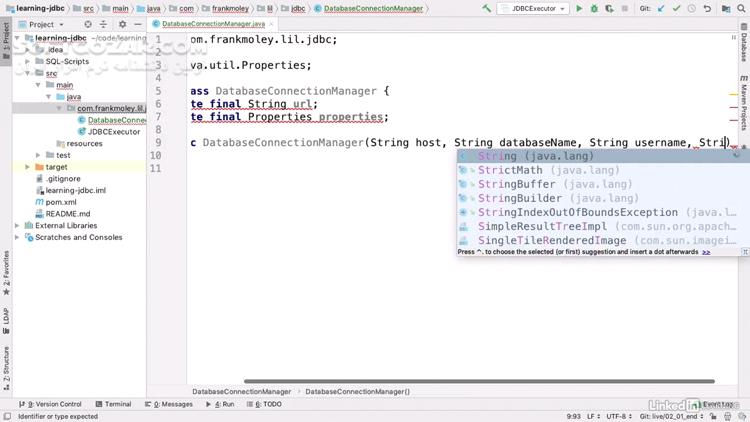 Lynda Learning JDBC تصاویر نرم افزار  - سافت گذر