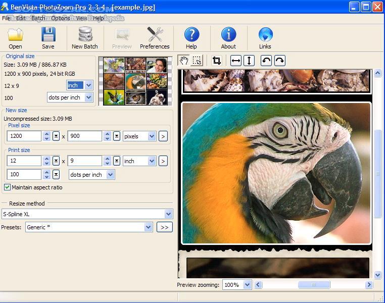 PhotoZoom Pro 7 0 8 Portable Mac تصاویر نرم افزار  - سافت گذر
