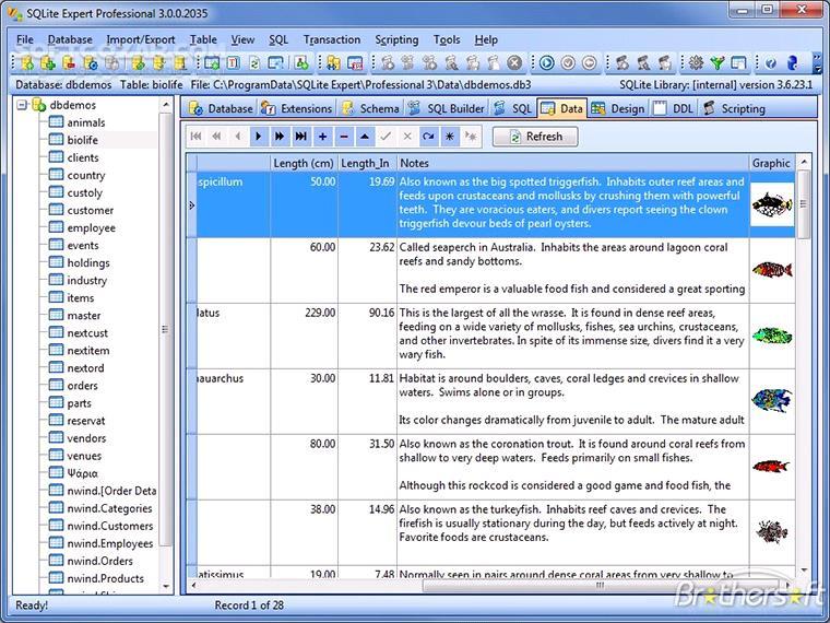 SQLite Expert Professional 5 3 4 459 تصاویر نرم افزار  - سافت گذر
