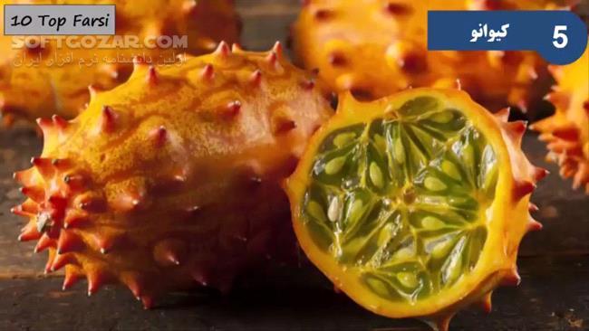 ویدئوی فارسی آشنایی با عجیب و غریبترین میوهها در دنیا تصاویر نرم افزار  - سافت گذر