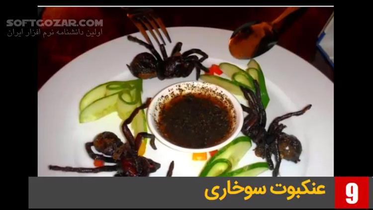 ویدئوی فارسی معرفی 14 غذای عجیب و غریب از کشورهای مختلف تصاویر نرم افزار  - سافت گذر