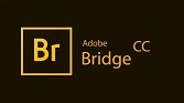 دانلود Adobe Bridge 2020 10.0.1.126 / macOS