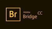دانلود Adobe Bridge 2019 9.1.0.338 / macOS 9.0.3