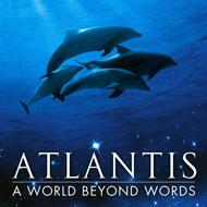 دانلود Atlantis