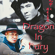 دانلود Dragon in Fury