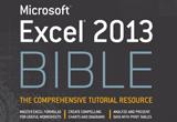 دانلود Microsoft Excel 2013 BIBLE