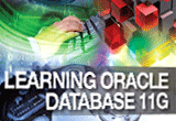 دانلود InfiniteSkills – Learning Oracle 11g Training Video