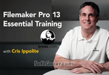 دانلود Lynda - FileMaker Pro 13 Essential Training