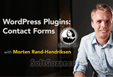 دانلود Lynda - WordPress Plugins - Contact Forms