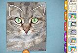 دانلود Paper Artist 2.1.0 for Android +4.0