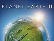 دانلود Planet Earth II
