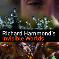 دانلود Richard Hammond's Invisible Worlds