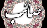 دانلود صائب تبریزی نسخه 2.1 برای اندروید 2.2+
