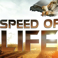 دانلود Speed of Life Documentary