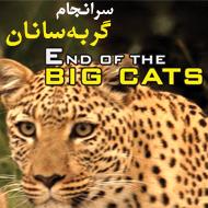 دانلود مستند کامل گربه سانان بزرگ با دوبله فارسی