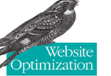 دانلود Website Optimization