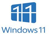 دانلود Windows 11 Pro Insider Preview 10.0.22000.100