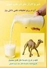 دانلود شیر و ادرار شتر از منظر طب سنتی